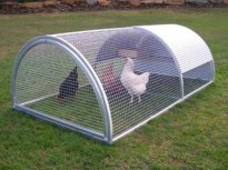 "Chicken Coop - ""Barter Roll\"""