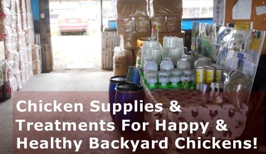 Chicken Supplies